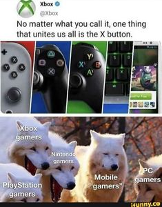 Really Funny Memes, Stupid Funny Memes, Funny Relatable Memes, Gamer Humor, Gaming Memes, Funny Cute, Haha Funny, Dankest Memes, Best Memes