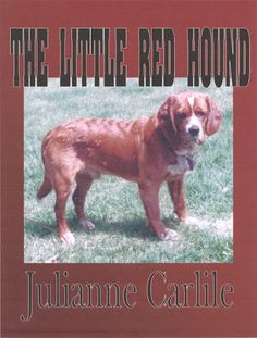Can a mutt beat purebreds in a hunting competition without things getting nasty?  http://www.amazon.com/dp/B004EYUF80