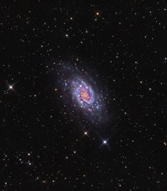 NGC2403 - Northern Spiral Galaxy