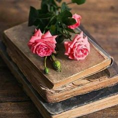 Find images and videos about photography, pink and flowers on We Heart It - the app to get lost in what you love. Book Flowers, Shabby Flowers, Antique Books, Vintage Books, Floral Wallpaper Phone, Photos Amoureux, Nothing But Flowers, Romantic Scenes, Still Life Photos