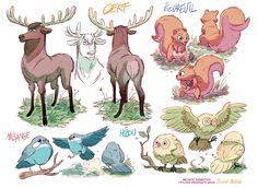 Fabien Mense's Deer, Squirrel, Owl and Bird drawings