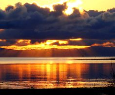Seagulls and sunrise--Royston, B. Amazing Sunsets, Sunrises, Beautiful Landscapes, Scenery, Weather, Celestial, Nature, Photos, Outdoor