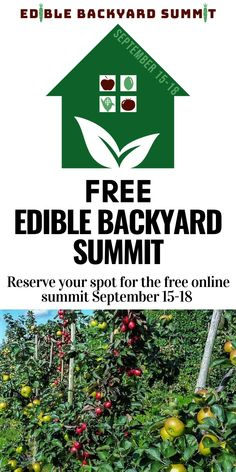Join thousands of other food growers for 4 days of digging into the fundamentals of growing your own edible backyard.  Wherever you are in your gardening journey (and even if you think you have a brown thumb), this event will give you the tools you need to build healthy soil, plan your garden for maximum yield, and much more! Plus get a free e-book with registration. #garden #gardentips #growfood Gardening For Beginners, Gardening Tips, Urban Homesteading, Grow Your Own Food, Vegetable Garden, Landscaping, Join, Journey, Backyard