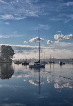 River Mist 2 - The beautiful Huon river at Franklin in Tasmania, Australia Abstract Landscape, Landscape Paintings, Used Sailboats, Boat Painting, Power Boats, Tasmania, Sailing Ships, Sailing Yachts, Amazing Photography