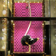 Vitrines: Louis Vuitton