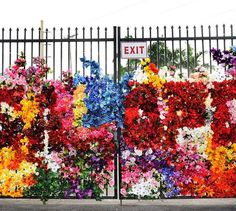 floral installation by FAFI in Miami (LP)