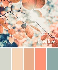 Gorgeous Palette Of Coral, Salmon, Satin Pink, Ivory, & Antique Teal Tones. Gorgeous Palette Of Cora