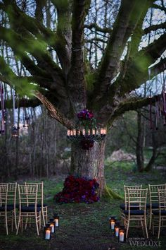 36 Ideas To Throw A Halloween Wedding With Style – crazyforus 36 Ideas To Throw A Halloween Wedding With Style: Moody florals on the tree and chandelier make the ceremony spot chic Witch Wedding, Pagan Wedding, Forest Wedding, Woodland Wedding, Our Wedding, Dream Wedding, Viking Wedding Dress, Perfect Wedding, Vampire Wedding