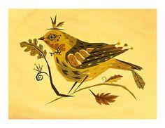 Spinus Bird by Alberto Cerriteño