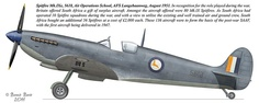 S.A.A.F. Spitfire Ww2 Aircraft, Military Aircraft, Aviation Theme, Aviation Art, South African Air Force, The Spitfires, Supermarine Spitfire, Battle Of Britain, Royal Air Force