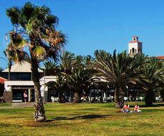Desde las Islas Canarias  ..Fotografias  : Disfrutando del Sol....Meloneras ...Maspalomas ......