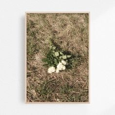 Stunning photograph with vintage vibes. Perfect on any wall. Kaja, Vintage Vibes, Mockup, Colours, Graphic Design, Wall Art, Rose, Artwork, Prints