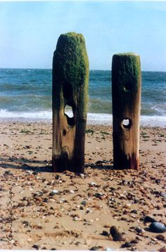 Photo by Geraldine Snape Dune, Suffolk Cottage, Suffolk Coast, Rock Pools, Beautiful Ocean, In Ancient Times, Fishing Villages, Strand, Underwater