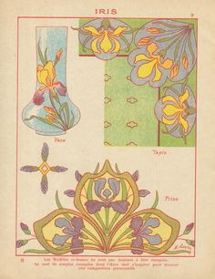 Art Nouveau Illustration, Botanical Illustration, Botanical Art, Art Nouveau Pattern, Art Nouveau Design, Propaganda Art, Alphonse Mucha, Lowbrow Art, Graphic Prints