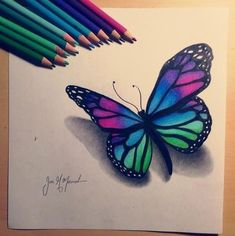 Butterfly Drawing Butterfly Drawing Butterfly Painting Color Beautiful Butterfly Drawing Flower With Images Flower Art ʚįɞ Beautiful Butterfly Art Beautiful Colorful Butterfly Drawing, Easy Flower Drawings, Butterfly Sketch, Sunflower Drawing, Cute Easy Drawings, Butterfly Painting, Pencil Art Drawings, Realistic Drawings, Butterfly Art