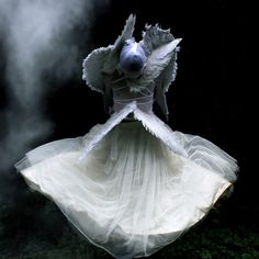 Flight of the Seraphim by Helen Warner (airgarten), via Flickr