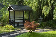 Japanese Garden, Kingston Lacy