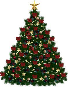 Fir-tree PNG image | PNG | Pinterest | Fir tree, Firs and ...