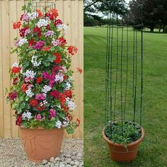 Amazing Vertical Garden Ideas about Climbing Plants in Pots # Amusements # Amazi… – Garten ideen Container Flowers, Container Plants, Container Gardening, Flower Tower, Barrel Planter, Diy Trellis, Bamboo Trellis, Flower Garden Design, Hanging Baskets
