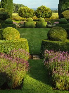 Breathtaking: Lavender and Topiaries | Content in a Cottage