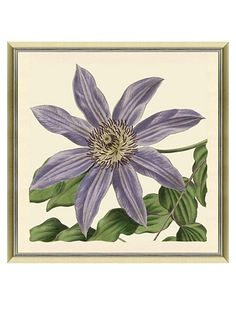 Flower Giclee Print
