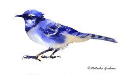 Bird watercolour painting