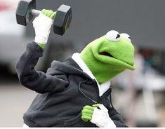 New funny memes kermit the frog ideas The post New funny memes kermit the frog ideas appeared first on Kermit the Frog Memes. Kermit Der Frosch Meme, Kermit The Frog Meme, Kermit And Miss Piggy, Funny Cartoon Memes, New Funny Memes, Love Memes, Jim Henson, Sapo Kermit, Sapo Meme