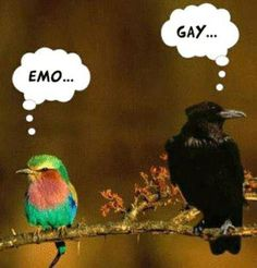 #divertido #comico