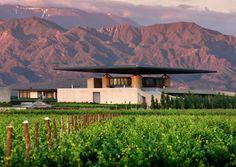 O. Fournier Winery (Mendoza, Argentina)