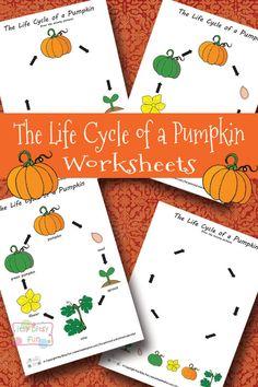Life Cycle of a Pumpkin Worksheets - Halloween/Science Fall Preschool, Kindergarten Science, Preschool Lessons, Preschool Crafts, Kids Crafts, Preschool Curriculum, Teaching Science, Teaching Ideas, Halloween Science