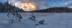 Winterland - This one is about ten shot vertical panorama.