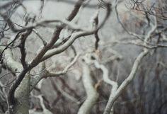Untitled, via Flickr.