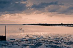 Outgoing Tide at Ryde by sue_hutton, via Flickr. Split toned