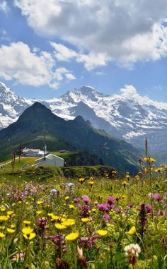Mannlichen  view of Eiger, Monch, and the Jungfrau, Switzerland