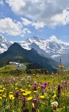 Mannlichen  view of Eiger, Monch, and the Jungfrau, Switzerland