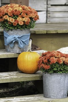 Easy and inexpensive way to decorate a porch using mums and pumpkins. Bring out the galvanized buckets, some burlap ribbon and get a rustic look |  CreativeCainCabin.com