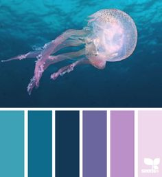 Jellyfish hues----this might help me incorporate some purples into my compositions.