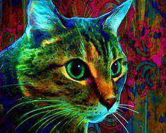 """cat art portrait """"Tiger"""" 16 x 20"""" Painterly Cat Portrait on Canvas  artpaw.com"""