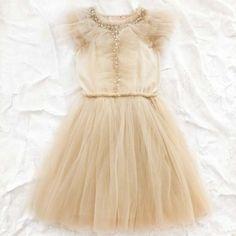 Perfect Birthday Dress   tutu du monde fairy dust tutu