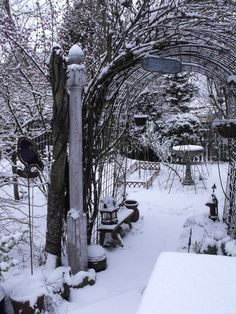 A cottage garden in winter. Snow covers areas of died-back vegetation.