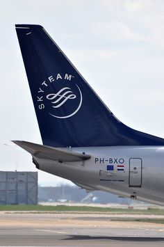 KLM-SkyTeam LogoJet B737-800