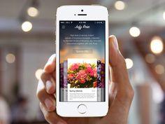 Jufy Rose App by Jufy Projects