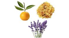 fragrant pharmacy - five essential oils and the medications they can replace.