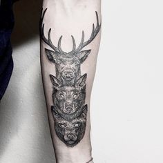 [ animal totem ] for @tjailiu