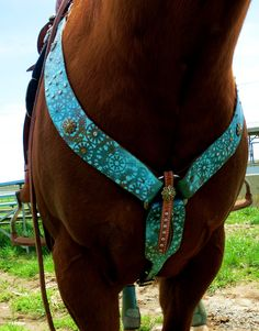 This is why I think this color would look good on my horse!