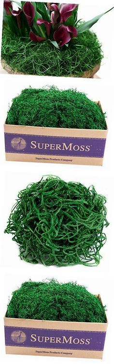 Swags and Garlands 28130: Supermoss (26928) Spanish Moss Preserved, Hunter, 3Lbs -> BUY IT NOW ONLY: $63.86 on eBay!