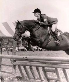 Jerry Goldman's Dresden ridden by Susie Slacum ~ from our Ponies Through The Decades Exhibit Hunter Jumper, Show Jumping, Dresden, Hunters, Ponies, Looking Back, Equestrian, Batman, Pony Tails