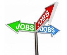 Baan kwijt? Houdt werk zoeken leuk!   ZOOK.nl
