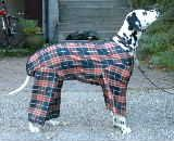 DIY doggie raincoat with legs - yes, it looks ridiculous, but until you have walked your long-haired dog along a dirt and gravel country road, you have no idea how neccessary the legs are. . .