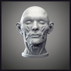 Discover the secrets of sculpting anatomically correct faces | ZBrush | Creative Bloq
